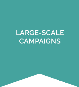 Contribution - Large Scale Campaigns